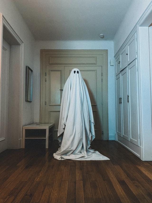 Ghost standing in hallway