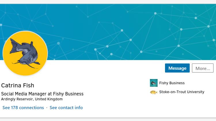 Catrina Fish LinkedIn Profile